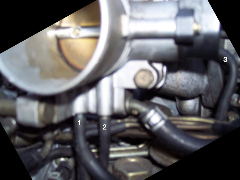 [SCHEMATICS_4JK]  Help with vacuum lines (and an introduction) - Maxima Forums | 96 Nissan Maxima Engine Vacuum Diagram |  | Maxima Forums